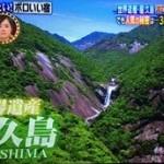 屋久島のボロいい宿は外国人に大人気!絶景は3時間の温泉!場所や評判は?【有吉ゼミ】